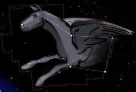 constellation pegase